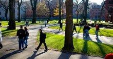 Üniversiteliler pandemi sürecini nasıl geçiriyor?