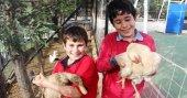 Biltek Okulları çocukları doğal yaşamla buluşturuyor